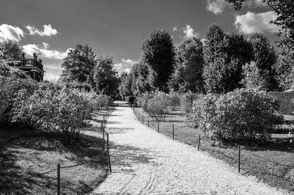 Photograph - A Path In The Garden by Borja Robles
