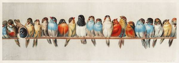 Wall Art - Painting - A Perch Of Birds  1880 By Hector Giacomelli  1822-1904  by Celestial Images