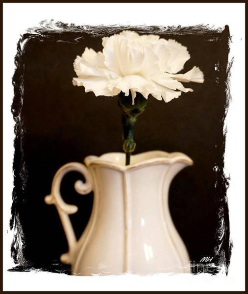 Wall Art - Photograph - A Picture Of A Flower In A Pitcher by Marsha Heiken