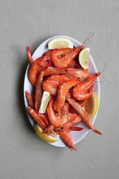 Seafood Photograph - A Plate Of Prawns by Halfdark