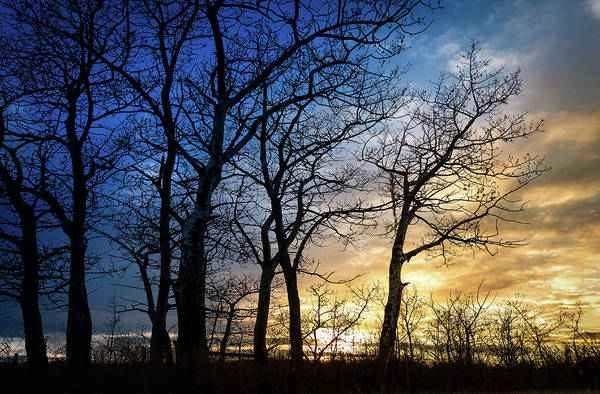 Photograph - A Prairie Winter Sunset by Philip and Karen Rispin