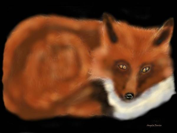 Painting - A Rainy Day Fox by Angela Davies