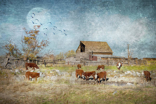 Digital Art - A Ranchers Dream by Ramona Murdock