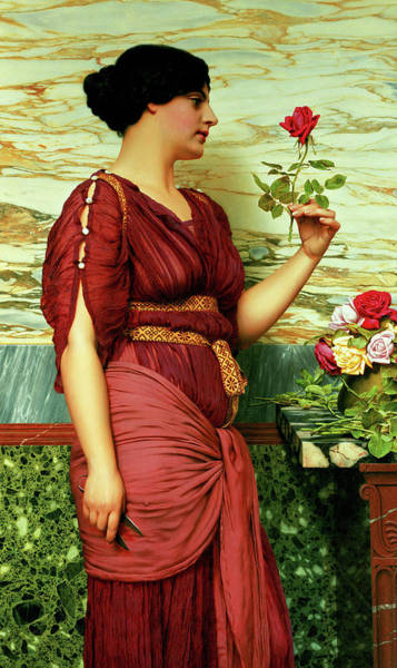 Wall Art - Painting - A Red Rose by John William Godward