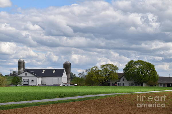Photograph - A Relaxing Homestead View by Christine Clark