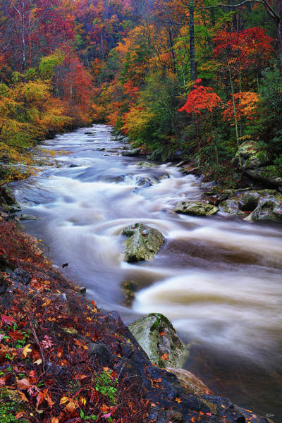 Photograph - A River Runs Through Autumn by Greg Norrell