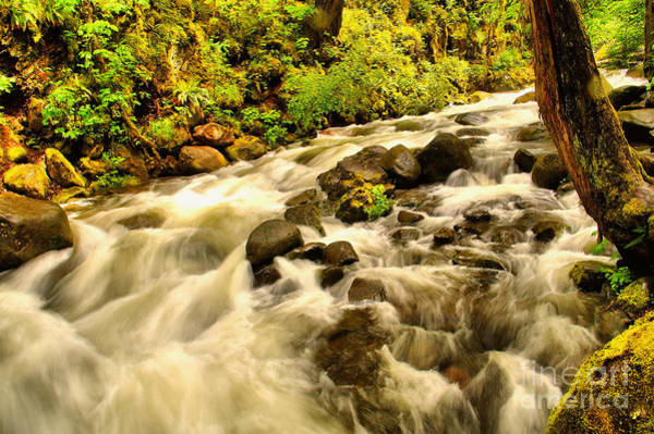 Wall Art - Photograph - A River Turns by Jeff Swan