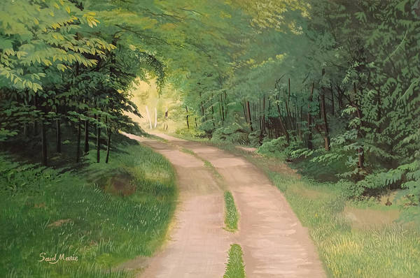 Painting - A Road In The Forest by Said Marie