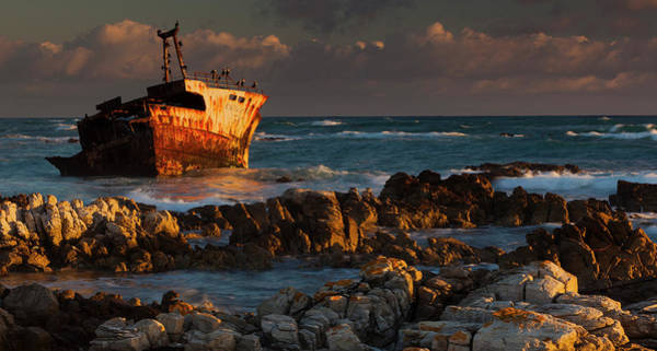 Cormorant Wall Art - Photograph - A Rusting Wreck, An Abandoned Ship Off by Mint Images - Art Wolfe