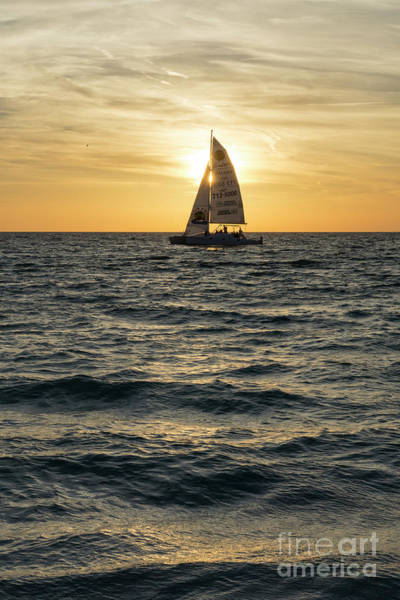Photograph - A Sailboat Crosses The Setting Sun At Sunset At Anna Maria Islan by William Kuta