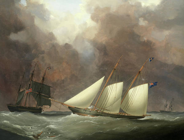 Wall Art - Painting - A Schooner Of The Royal Western Yacht Club Off Teignmouth by Nicholas Matthew Condy