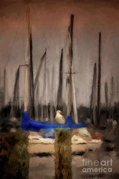 Digital Art - A Seagull At Pirates Cove by Lois Bryan