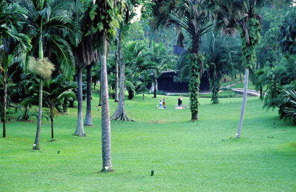 Southeast Asia Wall Art - Photograph - A Section Of Lawn In The 54 Hectare by Glenn Beanland