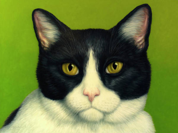 Wall Art - Painting - A Serious Cat by James W Johnson