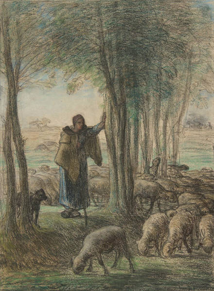 Drawing - A Shepherdess And Her Flock In The Shade Of Trees by Jean-Francois Millet