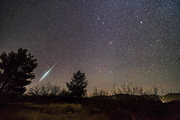 Photograph - A Single Bright Meteor From The Geminid by Alan Dyer