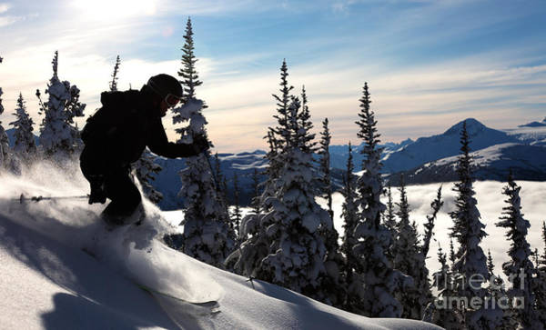 Fluffy Wall Art - Photograph - A Skier Glides Through Fresh Powder On by Robcocquyt