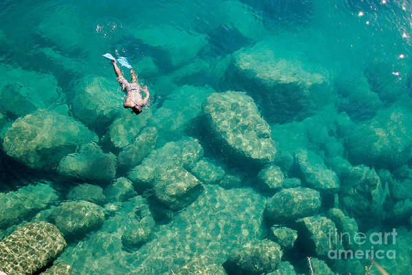 Wall Art - Photograph - A Snorkeler Explores The Scenic Rock by Saphotog