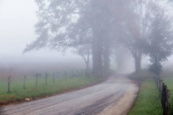 Wall Art - Photograph - A Sparks Lane Morning by Lana Trussell