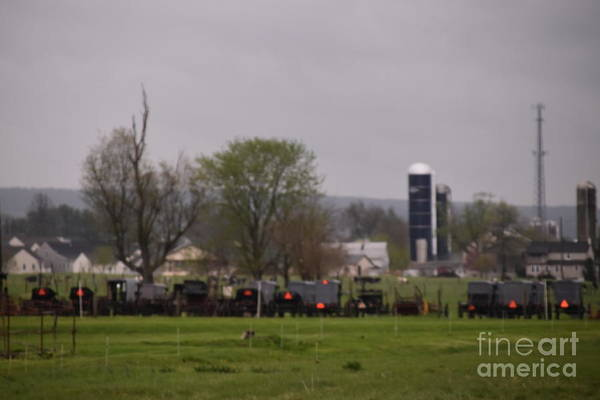 Photograph - A Spring Amish Gathering by Christine Clark