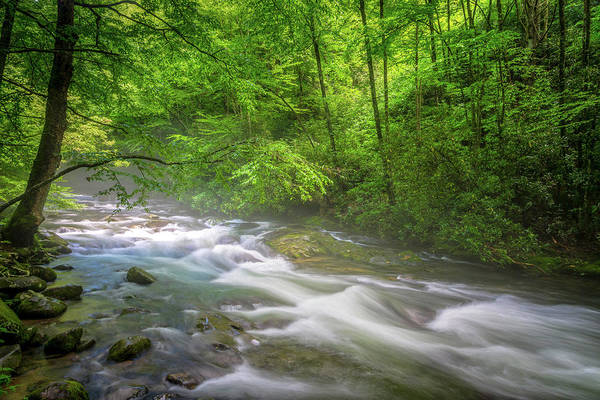Wall Art - Photograph - A Springtime Stream by W Chris Fooshee