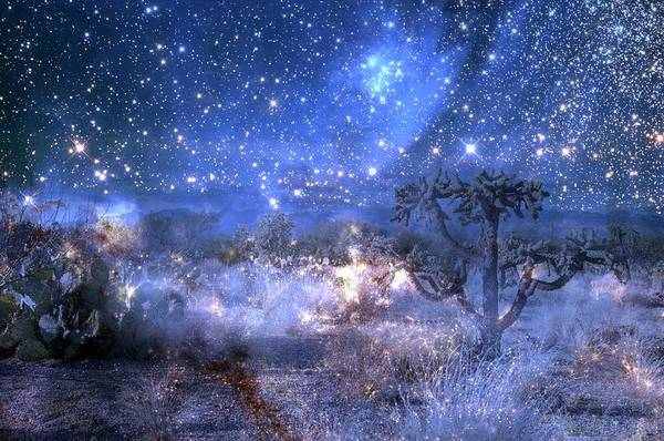 Digital Art - A Starry Night In The Desert by Ramona Murdock