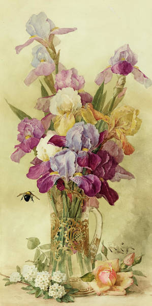 Wall Art - Painting - A Still Life With A Bumblebee And Irises In A Glass Pitcher by Paul de Longpre