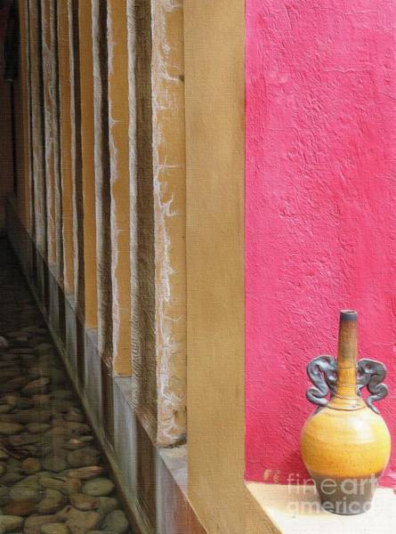 Atotonilco Photograph - A Study Of Contrasts by Diana Rajala