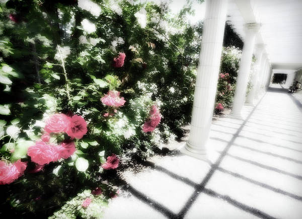 Wall Art - Digital Art - A Summer At Yaddo Xii by Tina Baxter