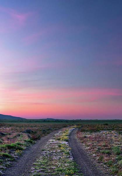 Photograph - A Sunrise Path by Leland D Howard