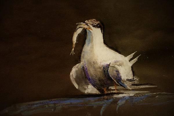 Wall Art - Painting - A Tern by Khalid Saeed