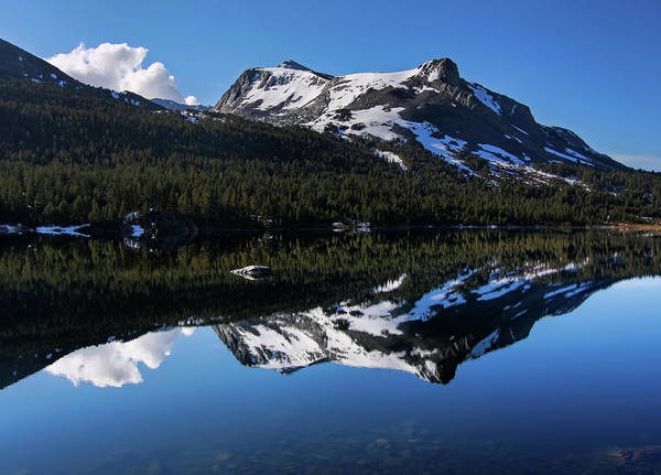 Tioga Photograph - A Time To Reflect by David Toussaint