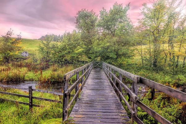 Photograph - A Touch Of Autumn On A Misty Morn by Debra and Dave Vanderlaan