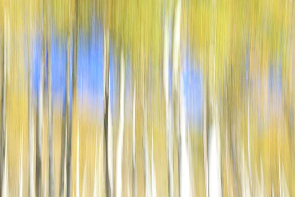 Wall Art - Photograph - A Touch Of Blue by Donna Kennedy