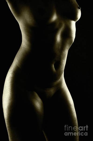 Photograph - A Touch Of Dark by Robert WK Clark