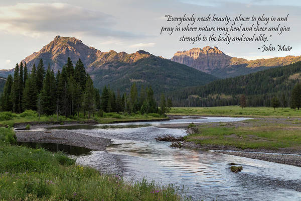 Photograph - A Tranquil Mountain Creek With Quote by Michael Chatt