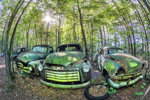 Photograph - A Trio Of Oldie Goldies by Debra and Dave Vanderlaan