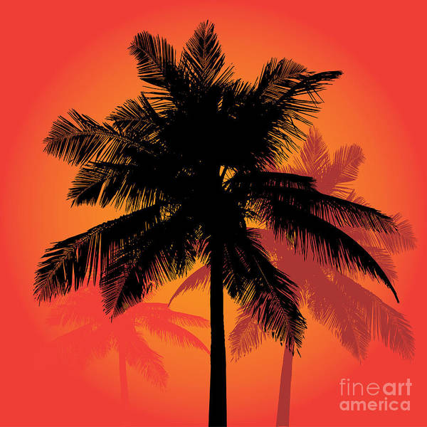 Wall Art - Digital Art - A Trio Of Tropical Coconut Palm Tree by Arena Creative