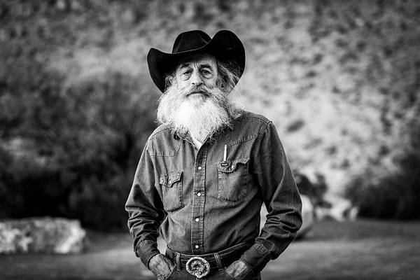 Photograph - A True Texan by David Morefield