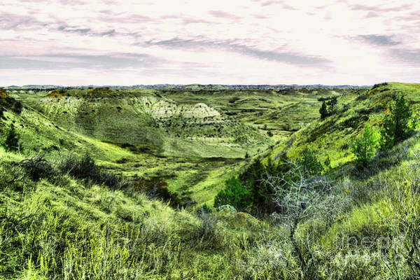 North Dakota Badlands Wall Art - Photograph - A View Into The Badlands by Jeff Swan