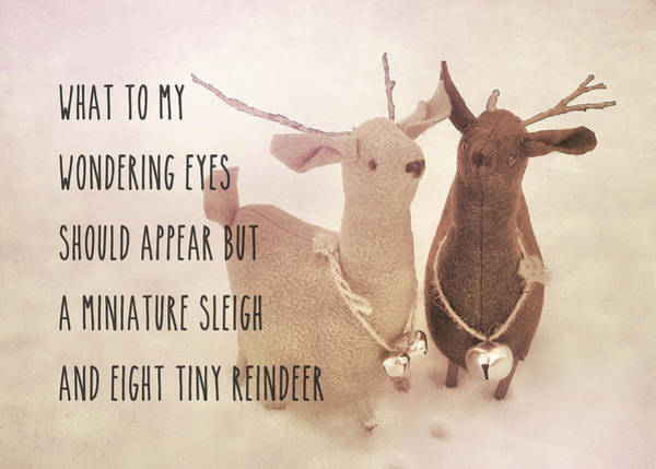 Photograph - A Visit From Saint Nicholas Quote by JAMART Photography