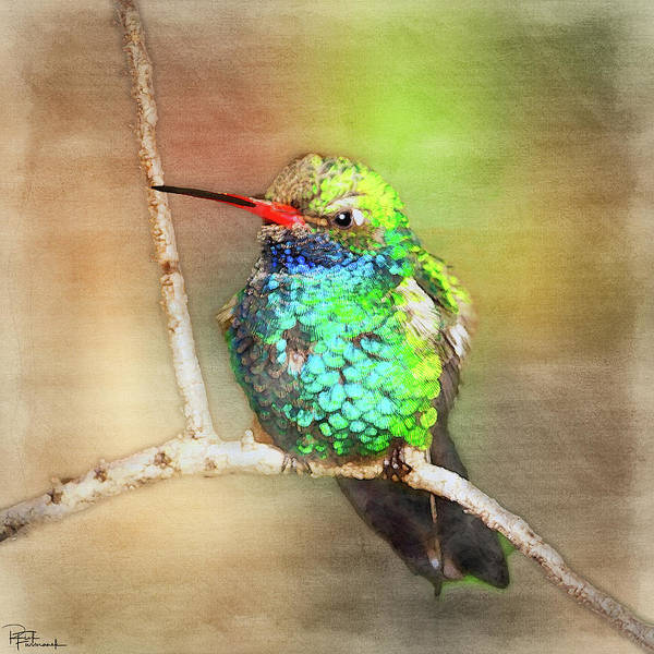 Photograph - A Visual Feast In Digital Watercolor by Rick Furmanek