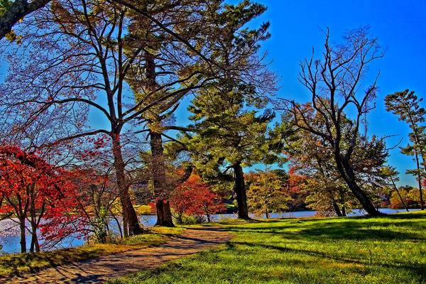 Photograph - A Walk By The Lake by Allen Nice-Webb