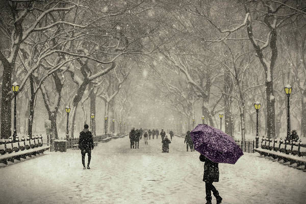 Painting - A Walk In The Snow In The Park New York by Movie Poster Prints