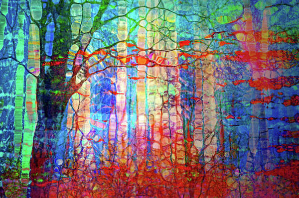 Wall Art - Digital Art - A Whimsical Wilderness by Tara Turner