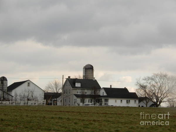 Photograph - A Winter Amish Farmland View by Christine Clark