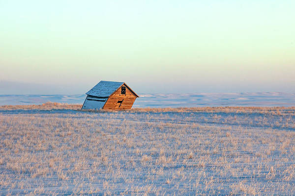 Photograph - A Winter's Lean by Todd Klassy