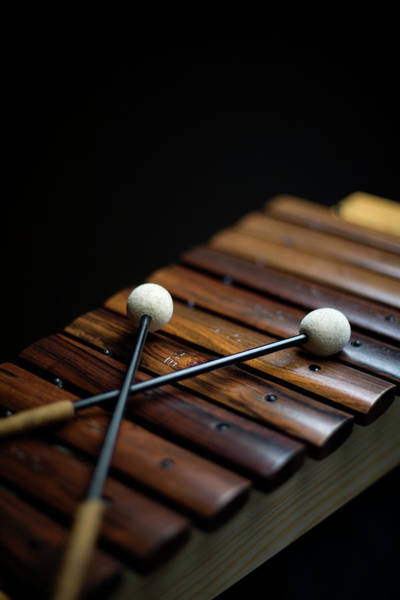 Skill Photograph - A Xylophone by Studio Blond