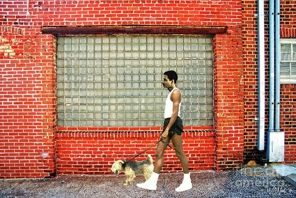 Photograph - A Young Man Walking His Dog by Walter Neal