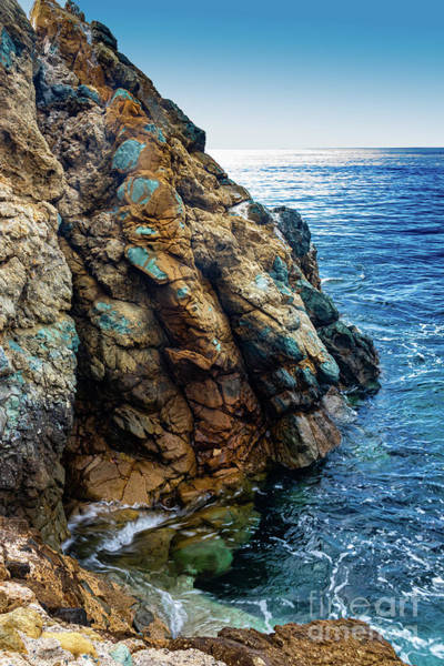 Wall Art - Photograph - Abalone Point, Avalon, Catalina  by Roslyn Wilkins